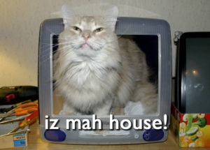yet_another_lolcat